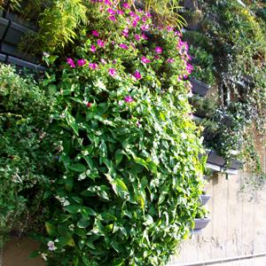 puzzle parete verde_02-01-01