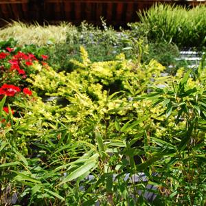 puzzle parete verde_02-01-04